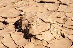 天旱和沙漠化 免版税库存图片