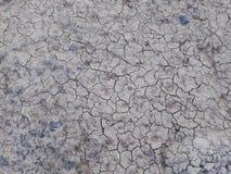 天旱和缺乏在土中间的水 免版税图库摄影