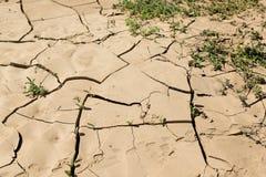 天旱土地,破裂的地球-费埃特文图拉岛海岛,西班牙 库存图片