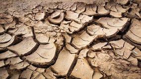 天旱棕色泥 库存照片