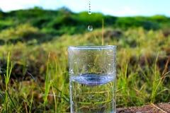 天旱,缺乏水,几乎没有雨 被染黄的领域,浇灌与饮用水的领域 免版税库存图片