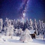 满天星斗的天空和一棵树在霜在美丽的房子在森林仲冬 免版税库存图片
