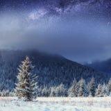 满天星斗的天空在冬天多雪的夜 喀尔巴汗,乌克兰,欧洲 库存图片