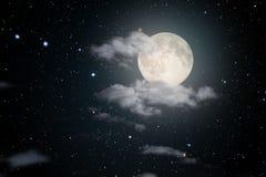 满天星斗的满月夜 免版税库存照片
