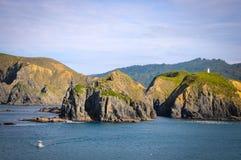 晴天有自然背景 小海岛在新西兰 小山和山在夏天 库存照片