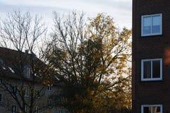 天气和太阳日落在卡斯特鲁普,丹麦 库存图片