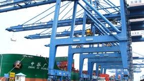 天津,中国,7月04日怀有的2017运输货物由起重机,天津,瓷 股票录像