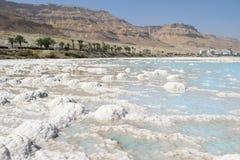 天然盐,死海,以色列储蓄  免版税库存照片
