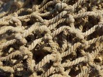 天然纤维网 库存图片