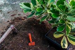 天然肥料土壤 图库摄影