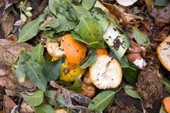 天然肥料堆热心 免版税库存照片