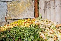 天然肥料堆 免版税图库摄影