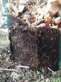 天然肥料堆 图库摄影