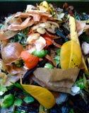 天然肥料/Biowaste 免版税库存照片