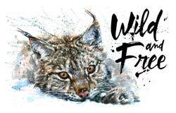天猫座狂放和自由水彩绘画,动物掠食性动物, T恤杉,印刷品,冬天,森林,狂放的加州的国王设计  库存图片