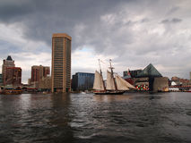 天猫座风帆在巴尔的摩内在港口 免版税库存图片