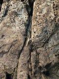天生被雕刻的岩石 图库摄影