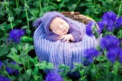 17天的微笑的新出生的婴孩在他的在篮子的胃睡觉在自然在室外的庭院里 库存图片