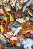 天的抓住在一个传统摩洛哥市场(souk)上的在索维拉,摩洛哥 免版税库存照片