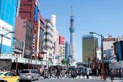 天空东京结构树 免版税库存图片