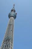 天空东京结构树 库存图片