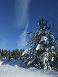 天空冬天 库存图片