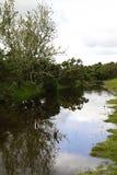 天空反射在Dartmoor的水中 免版税库存照片
