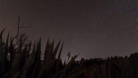 天空和星,照片的图象在大加那利岛海岛  免版税库存图片