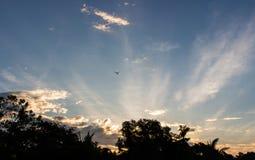 天空在早晨 免版税库存照片