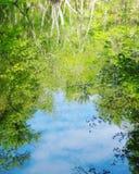 天空在水中 免版税图库摄影