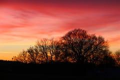 天空在12月改变了肤色 免版税库存图片