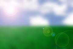 天空太阳草 向量例证