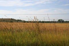 天空牧场地 免版税库存照片
