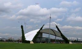 天空看法和大厦和风筝 免版税库存照片