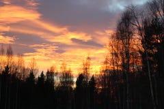 天空着火 库存照片