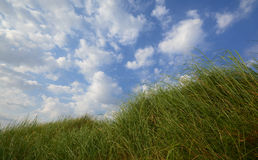 天空自由 库存照片