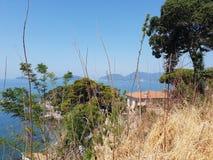 天空蔚蓝和海通过被看见的树 库存图片