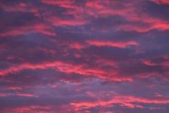天空转动了猩红色和紫色 库存图片
