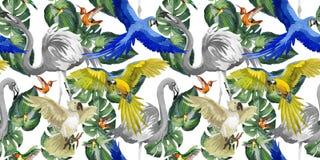 天空鸟在野生生物的鹦鹉样式由水彩样式 向量例证
