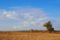 仅天空,仅风 库存图片