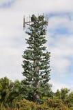 天线移动电话结构树 免版税图库摄影
