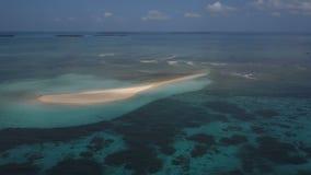 天线:一个小海岛,一个失去的海岛,美丽的天蓝色的水,两的一个海岛,桑给巴尔,马尔代夫 股票录像