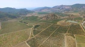 天线:农田风景  股票录像