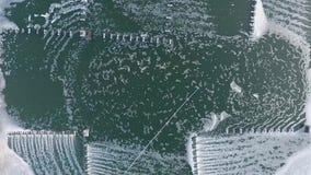 天线:虾与氧气通风系统的农厂水池 在视图之上 Phang Nga,泰国 慢动作的HD 股票录像