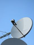 天线antenne抛物面定向塔卫星塔 免版税图库摄影