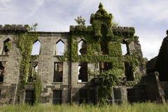 天花医院renwick废墟罗斯福岛 免版税库存图片