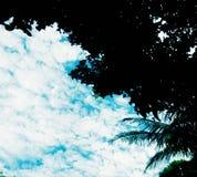 天蓝色云彩树剪影 免版税库存照片