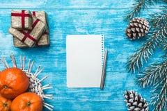 天蓝色木背景,海洋 冷杉绿色结构树 装饰锥体 果子用普通话 信函圣诞老人 图库摄影