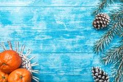 天蓝色木背景,海洋 冷杉绿色结构树 装饰锥体 果子用普通话 库存照片