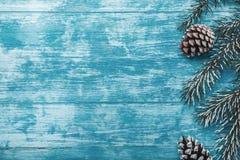 天蓝色木背景,海洋 冷杉绿色结构树 装饰锥体 Xmas和新年贺词的空间 垂直 库存图片